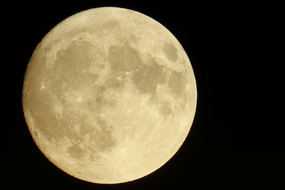 luna-terrestre
